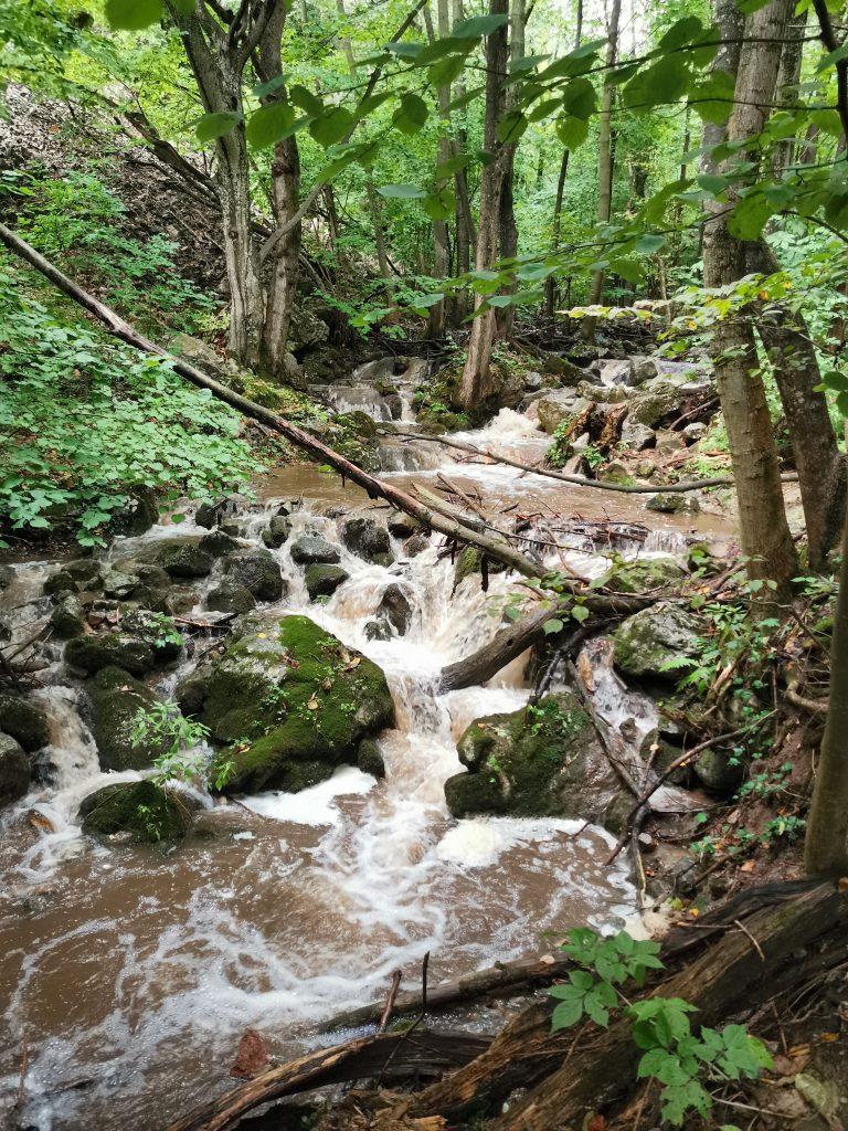 Zádielska dolina - blatný potok